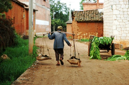 Rural poverty remains subbornly rooted in many remote, mountainous parts of China. pdvos/flickr.