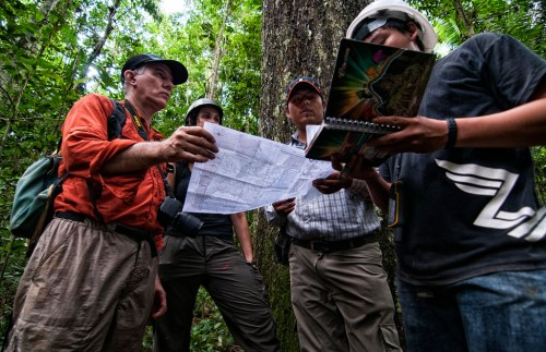 CIFOR scientists are recording the production of every Brazil nut tree in this concession to determine the impact of timber harvesting.  Marco Simola/ CIFOR