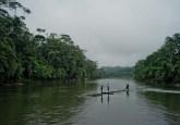El cambio climático podría reducir la escorrentía en la región mesoamericana y favorecer una transición de especies de bosques tropicales húmedos a una vegetación más apropiada para climas secos, dijo Bruno Locatelli, investigador del Centro para la Investigación Forestal Internacional. CIFOR/Tomas Munita