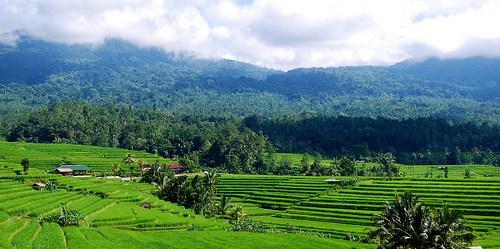 Inti dari Pendekatan bentang lahan yaitu pengelolaan kompleksitas bentang lahan terpadu, secara holistik menggabungkan berbagai tata guna lahan dalam bentang lahan tersebut ke dalam suatu proses manajemen tunggal. Daniel Murdiyarso/CIFOR