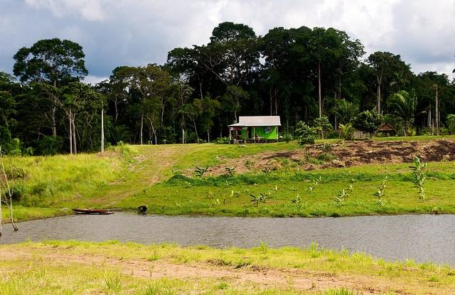A rodovia BR-364, recém-pavimentada, está em risco de maior desmatamento. Kate Evans/CIFOR.