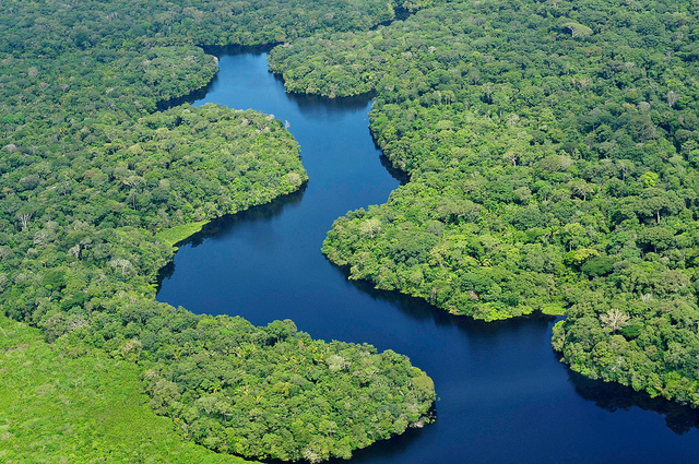 Aerial view of the Amazon forest, near Manaus, Brazil. Neil Palmer/CIFOR