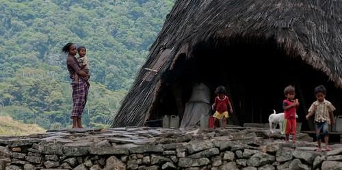 Sebuah penelitian baru menemukan bahwa kebutuhan rumah tangga dengan aset kecil cenderung menebang sedikit hutan. Foto @CIFOR