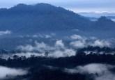 Hutan di Lembah Danum, Sabah, Malaysia. Menetapkan definisi dari jenis-jenis hutan berbeda dapat memampukan analisis yang lebih baik dari pengembangan dan analog kompensasi (tradeoffs) pengelolaan hutan. M. Edliadi/CIFOR photo
