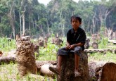 A child sits on a tree stump in Central Kalimantan, Indonesia.   Photo by Achmad Ibrahim for Center for International Forestry Research (CIFOR).