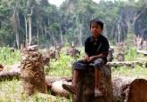 forest children