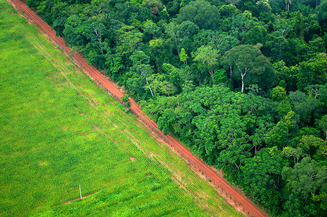 Berhadapan lanskap hutan dan pertanian di Acre, Brasil. Pergeseran dari negosiasi besar iklim internasional ke implementasi nasional dan sub-nasional setelah 2015 menekankan perlunya ilmu pengetahuan berperan lebih besar dalam kebijakan, kata seorang pakar. Kate Evans/CIFOR photo.