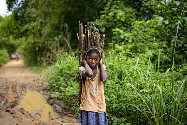 The US-Africa Leaders Summit: Perspectives from the Congo Basin