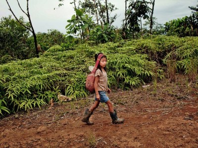 Beyond dialogue: building trust to save the people's forests and support development