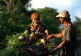 Pengakuan peran historis masyarakat lokal dalam menjaga ekosistem penting untuk mencapai kelestarian hutan dan mendukung pembangunan. Aulia Erlangga/CIFOR
