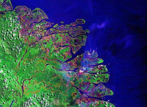 Citra satelit pesisir Kalimantan. Apakah citra satelit cara terbaik melakukan penilaian menyeluruh apa yang terjadi di lapangan? Kredit photo dari Landsat.