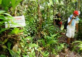 Journalist are doing video shooting in Selimbau Orchid Garden. The garden is a sanctuary for orchid, initiated by locals & CIFOR.    ©Center For International Forestry Research/Ramadian Bachtiar