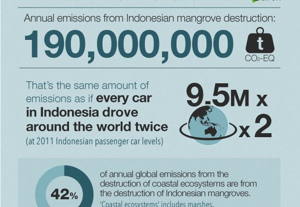 Mangrove-emissions-Infographic_sections5_4