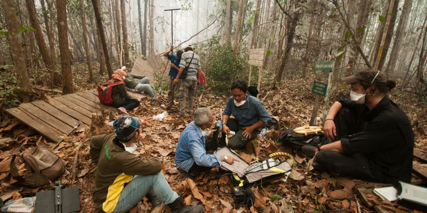 Researchers use geo-radar technology to measure peat depth in the Tumbang Nusa research forest outside Palangkaraya, Central Kalimantan. Photo by Aulia Erlangga/CIFOR