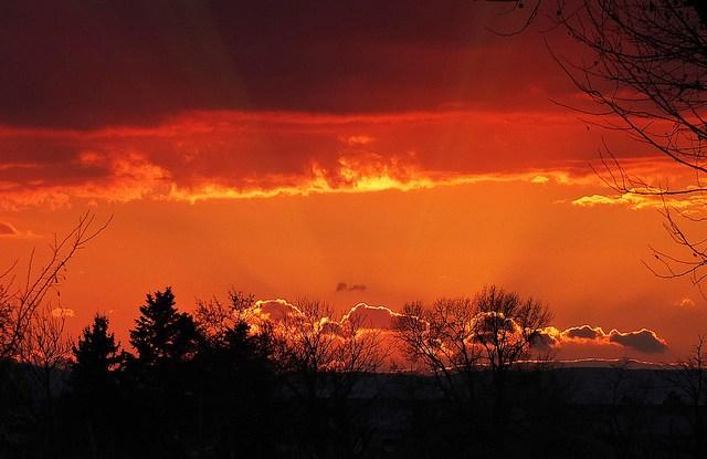 ¿Cuál será el horizonte de REDD+? Foto por ImAges ImprObables Cc.