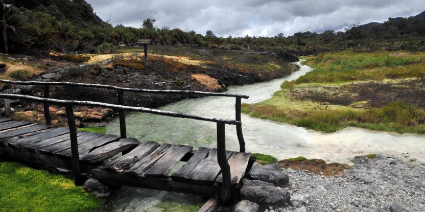 Les objectifs de restauration comprennent la protection des bassins versants et le renforcement de la biodiversité. Neil Palmer/CIAT