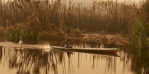 Kebakaran lahan dan hutan yang terus berulang membuat bentang alam menjadi lebih rentan. Aulia Erlangga/CIFOR