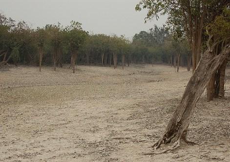 Sungai mengering di Danau Sentarum. Pemahaman tentang situasi dan kondisi alam sekitar akan menguatkan praktik tata kelola lahan melalui pendekatan bentang alam.