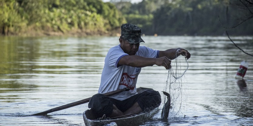 Pesca en Callería. La diversificación de las actividades de subsistencia es de vital importancia para los pobladores de las comunidades del valle del río Ucayali, Perú, que esperan vender créditos de carbono en el marco de REDD+.