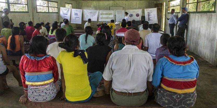 Socialización de resultados de investigación del Estudio Comparativo Global sobre REDD+ de CIFOR en la comunidad amazónica La Roya, Perú.