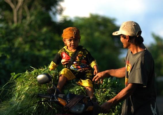 Pendekatan bentang alam memastikan keterpaduan pengunaan lahan untuk keberlanjutan sumber daya alam.
