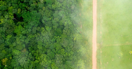 A bird's eye view of the stark contrast between the forest and agricultural landscapes near Rio Branco, Acre, Brazil.  Kate Evans  CIFOR