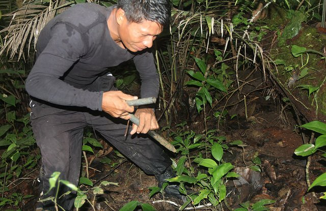 A hunter returns home early in the morning after checking traps he set the day before. The day's take: an armadillo. Barbara Fraser CIFOR