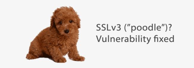 poodle-sslv3-vulnerability