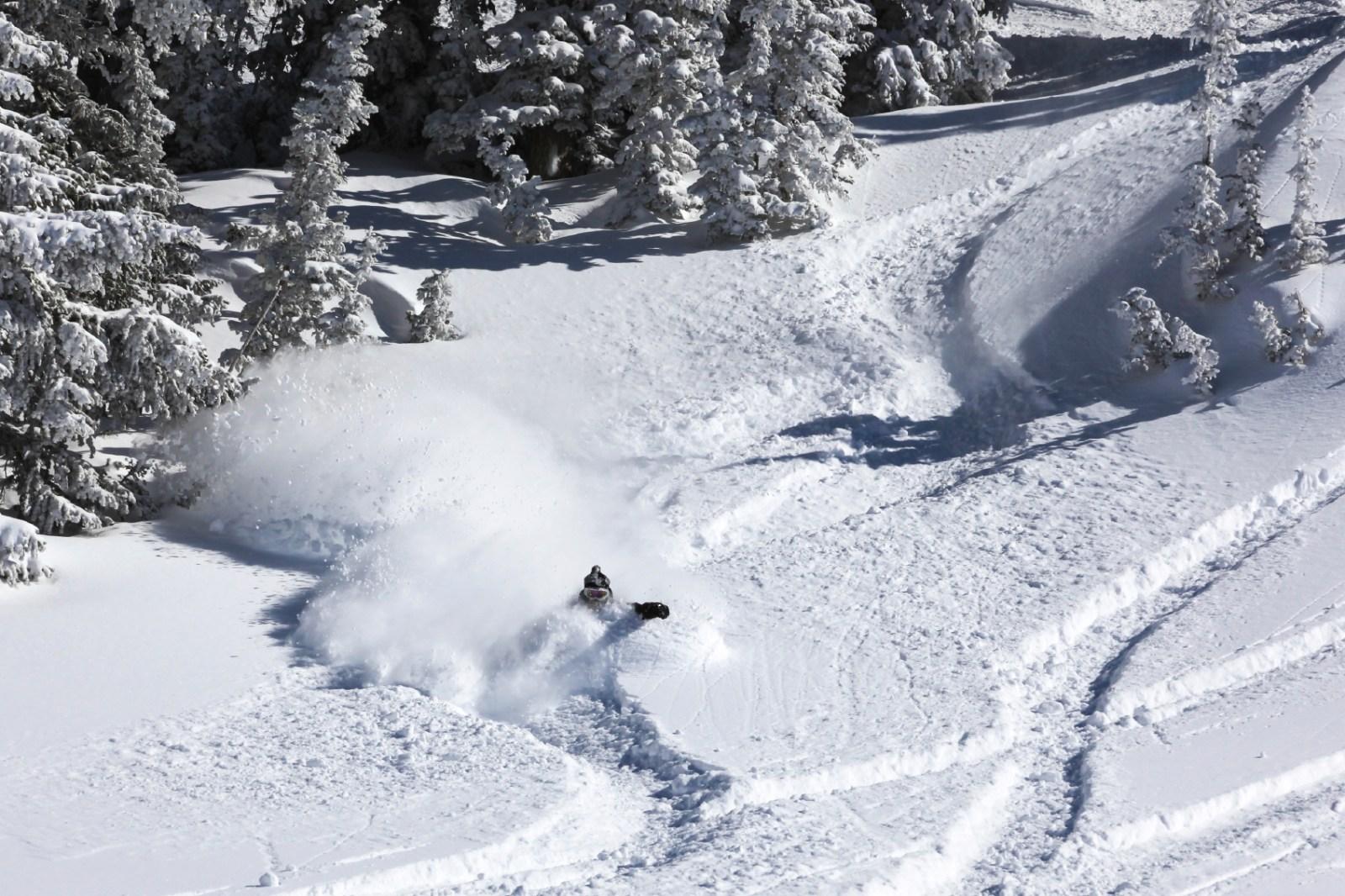 Man skiing through powder