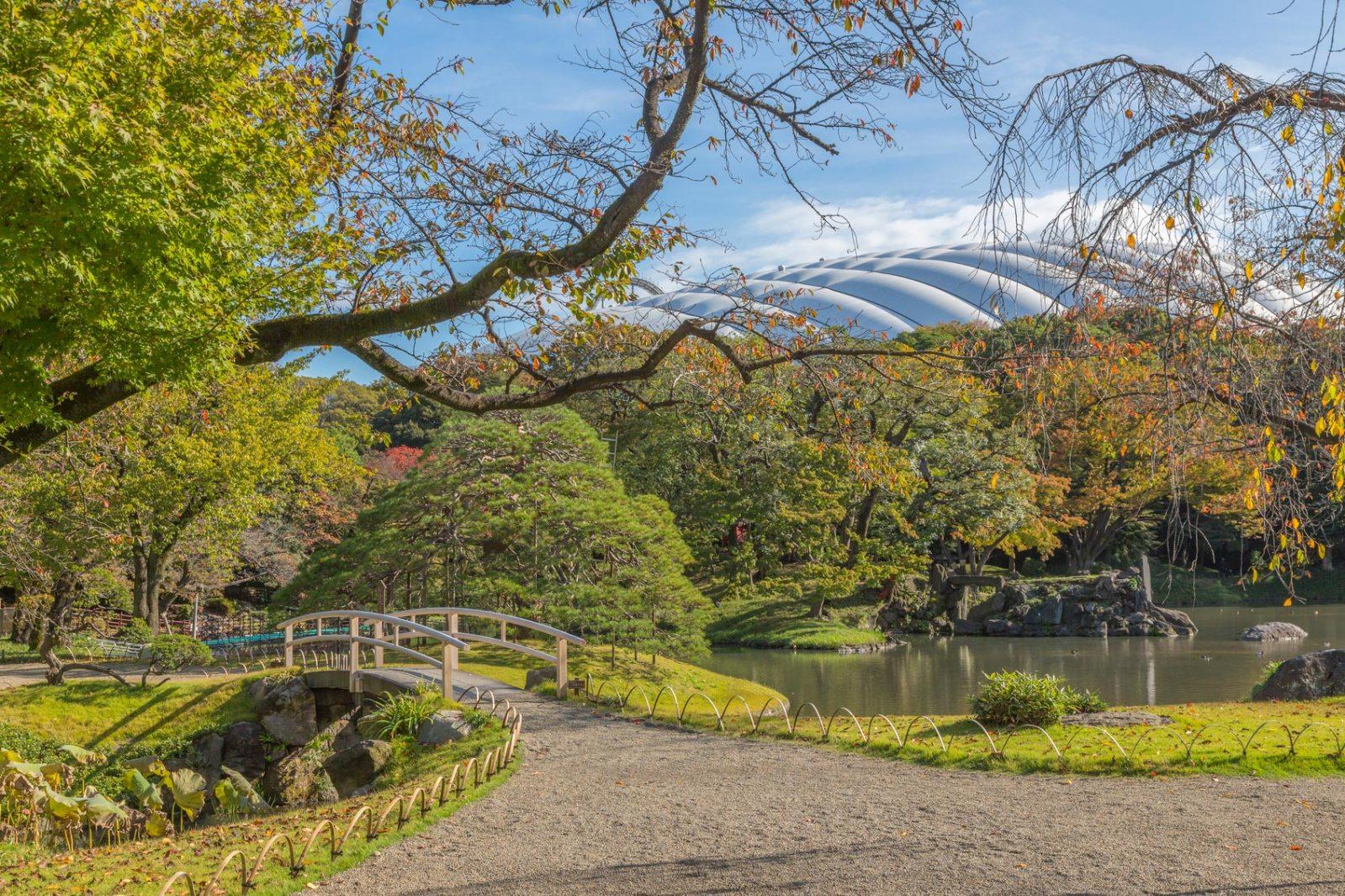 Japanese-garden-tokyo
