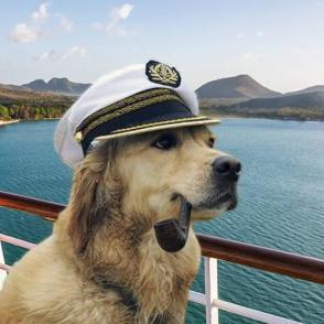 Dogs on Cruises