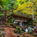 Mingo Falls Foot Bridge Autumn 20 x 30 Canvas Galley Wrap