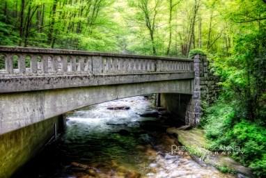 Moore Cove Bridge