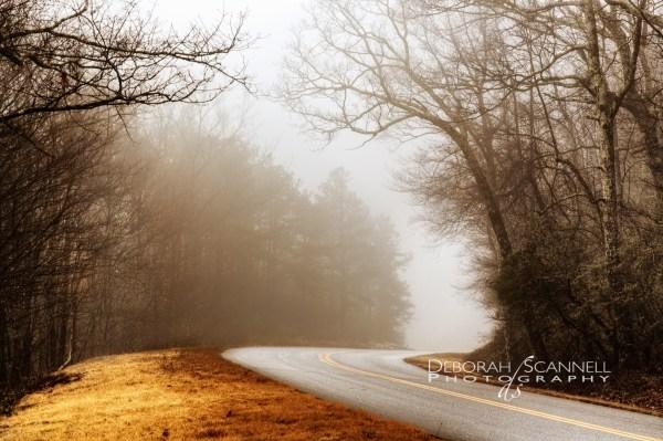 Grace Awaits On Misty Golden Bend