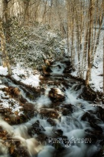 Golden Snowy River