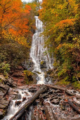 Early Autumn Mingo Falls