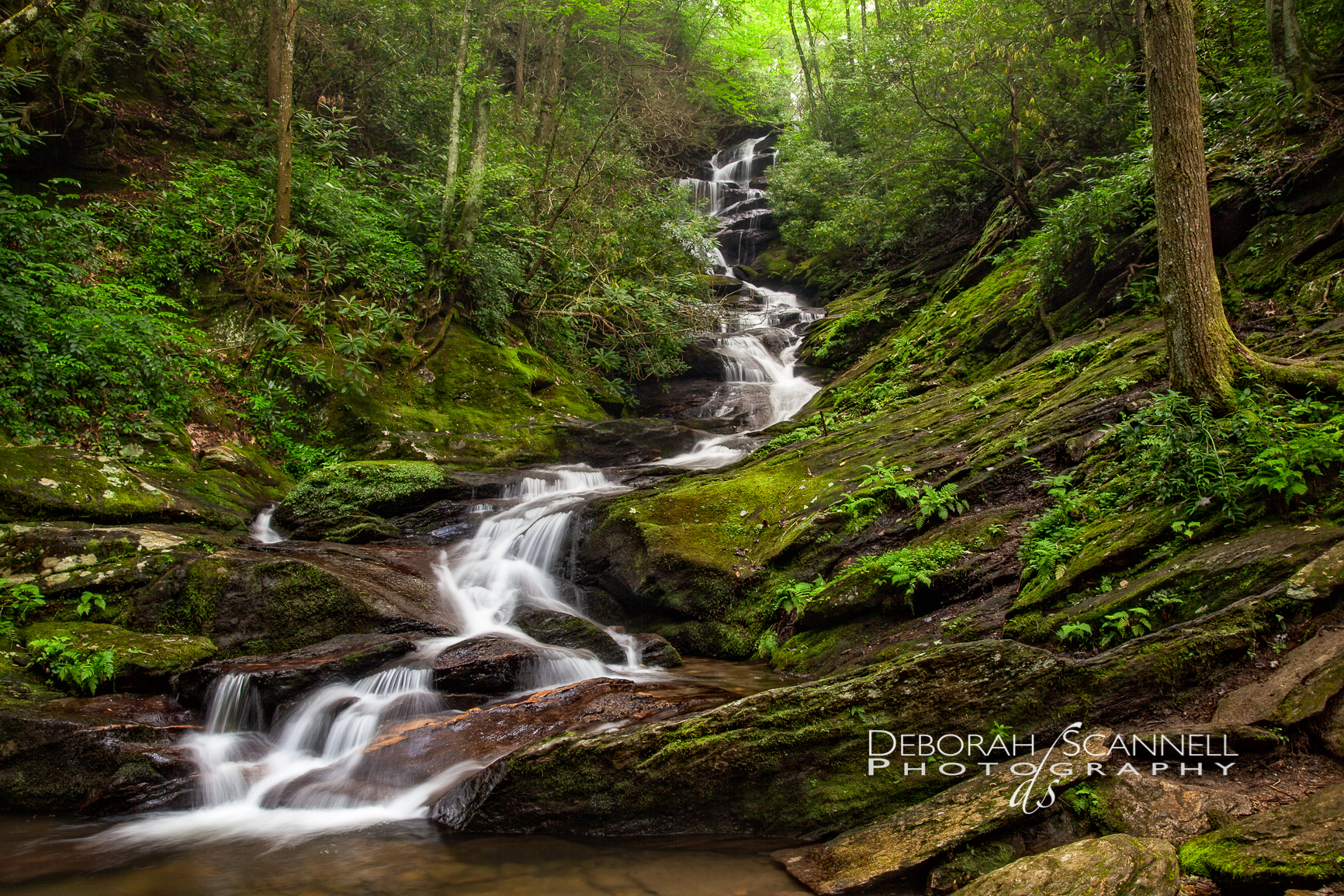 Waterfalls Creeks Rivers And Streams Of The Carolina S