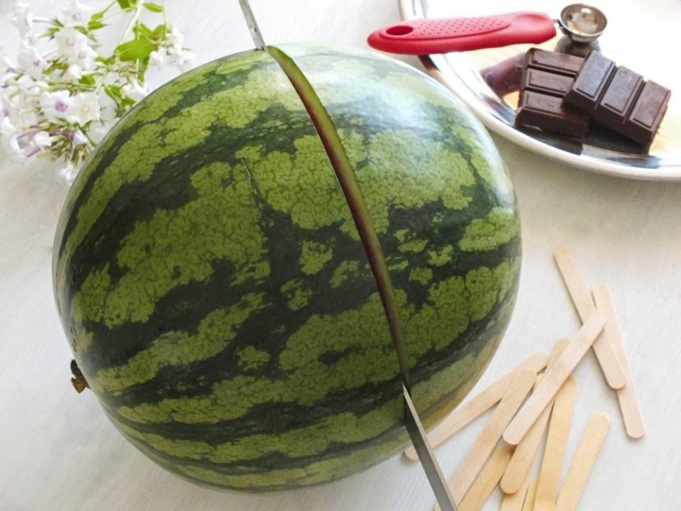 meloun1