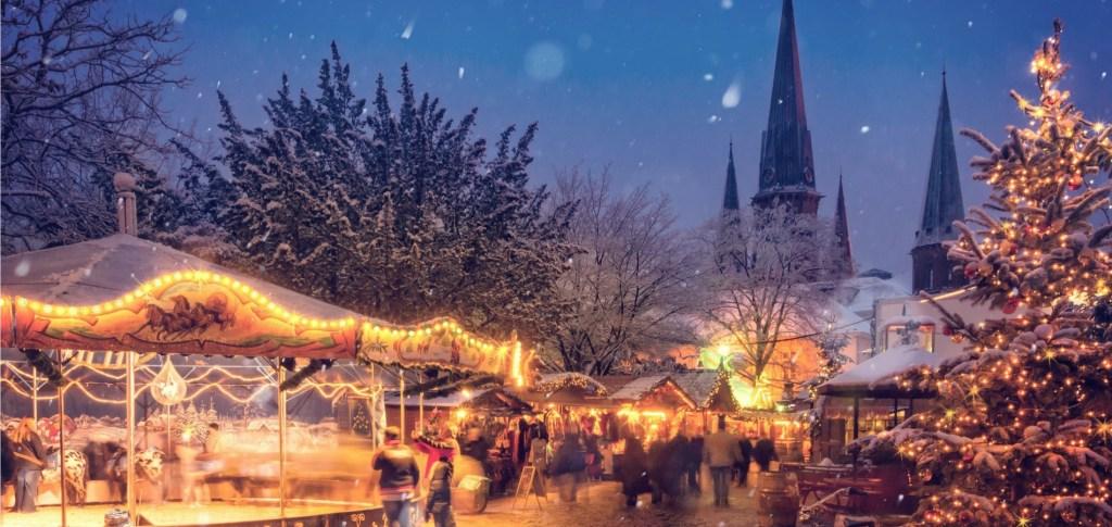 Christmas trees 1900x900 (1)