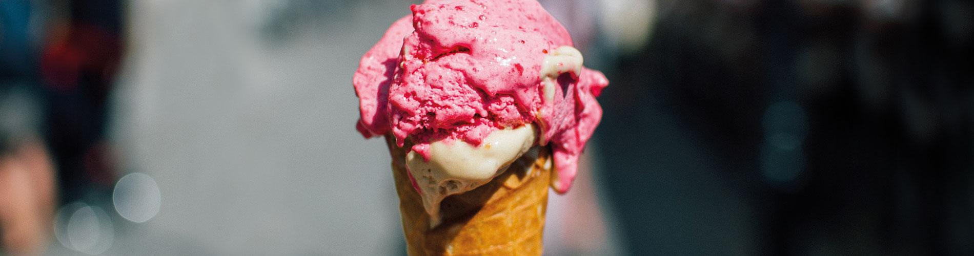 Blog_Veganuary_Van-Leeuwen-Ice-Cream_1900x500_Q120