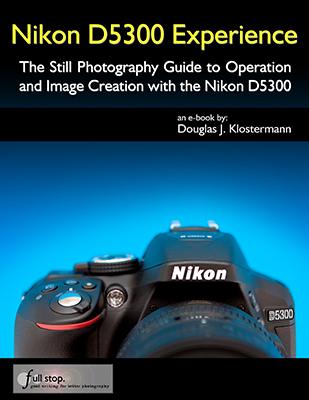 Nikon D5300 book manual guide how to autofocus settings menu custom setup dummies learn use tips tricks quick start