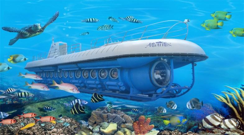 maldives reef