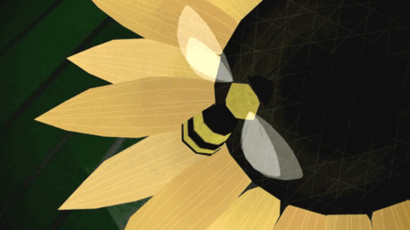 bees blog teded