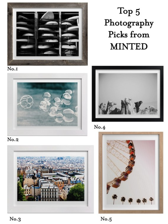top 5 photographs from minted