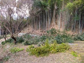 20121121_001.jpg
