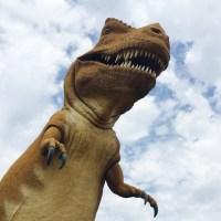 Standing in dinosaur footprints at Dinosaur Valley State Park