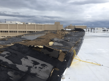 This fully adhered TPO roof was peeled back from the edge during a wind event, separating insulation layers.