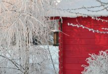 consejos-decorar-espacio-verde-invierno