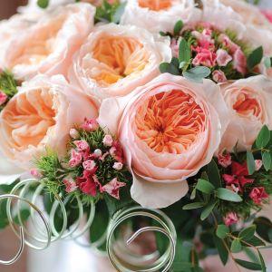 Rosas de corte David Austin