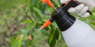 Cómo actúan los pesticidas ¡En Garden Center Ejea te lo decimos!
